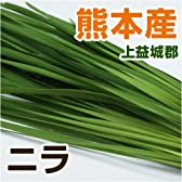 あいあい 熊本県産 ニラ (熊本上益城産) 100g 【野菜セット同梱で】【九州 野菜】【にら】【韮】【葉物】
