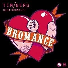Seek Bromance (Avicii Vocal Extended)