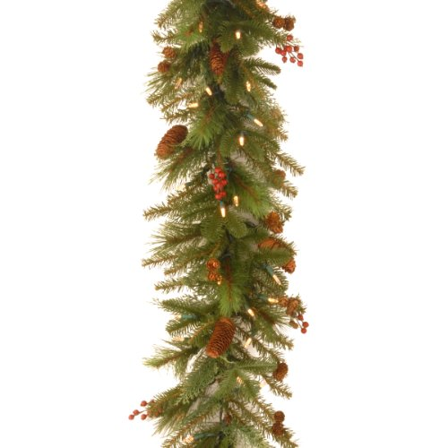 National Tree Nl13-300L-6B-1 Noelle Garland With 60 Soft White Led Battery Operated Lights, 6-Feet