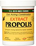 Propolis Extract - Natural Liquid Honey Paste - 11.4 oz. - Paste