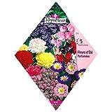 [春・秋まき 花タネ][フランス花の種]パフュームガーデンミックス(香りの良い草花ミックス)*