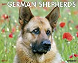 Just German Shepherds 2014 Wall Calendar