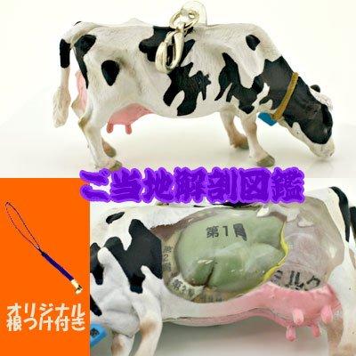 ご当地解剖図鑑根付(十勝乳牛)No.5