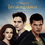 The Twilight Saga: Breaking Dawn 2013...