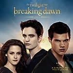 The Twilight Saga: Breaking Dawn 2013...