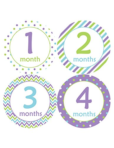 Months in Motion 119 Monthly Baby Stickers Baby Girl Milestone Age Sticker Photo