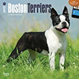 BT Boston Terriers 2015 Wall