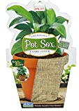Misco Home & Garden PSX10/12-5 Pot Sox, 10-Inch, Burlap