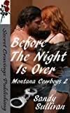 Before The Night Is Over (Montana Cowboys Book 2)