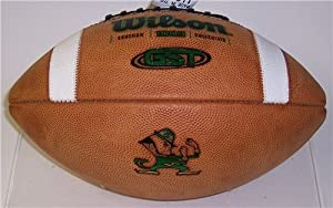Notre Dame Fighting Irish Official Wilson NCAA Football by Hall of Fame Memorabilia