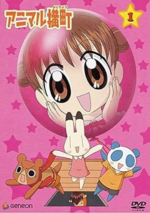 アニマル横町 DVD-BOX