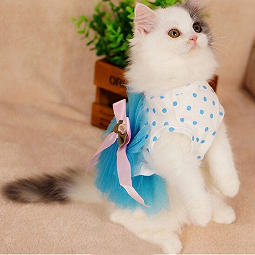 i'Pet® Floral Princess Cat Party Dress Small Dog Tutu Ball Gown with Flower Puppy Multi-layer Lace Mesh Skirt with Dot Doggy Photo Apparel Doggie Birthday Stretchy Clothes Spring Summer Holiday Wear with Ribbon Halloween Classics Collection Costume (Blue
