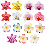 Accessories Set of 15pcs Amazing Artificial Flowers Hair Pins / Clips / Decorations With 6 Exotic Hawaii Plumerias And 9 Noble Orchids In Different Colors By VAGA