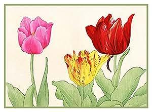 Tanigami Konan Asian Tulip Flowers Counted