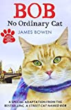 James Bowen Bob: No Ordinary Cat