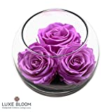 """Luxe Bloom Orchid Preserved Roses 