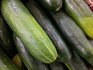 Honeyman Farms 1288 Cucumber Long Green Seed Packet