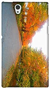 Timpax protective Armor Hard Bumper Back Case Cover. Multicolor printed on 3 Dimensional case with latest & finest graphic design art. Compatible with Sony L36H - Sony 36 Design No : TDZ-26284