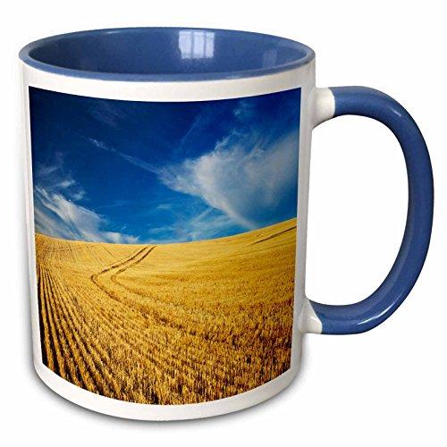 Danita Delimont - Farms - Farm Fields, Harvest Wheat, Palouse, Washington, USA - US48 TEG0425 - Terry Eggers - 11oz Two-Tone Blue Mug (mug_148727_6)