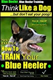 Blue Heeler, Blue Heeler Training, Think Like a Dog, But Don't Eat Your Poop!: 'Paws on Paws Off' Blue Heeler Breed Expert Dog Training. Here's EXACTLY How to TRAIN Your Blue Heeler (Volume 1)