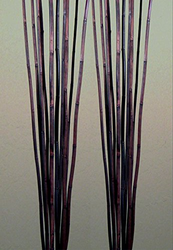 Green Floral Crafts Natural River Cane 6 Ft, Dark Brown, Pack of 20