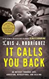 img - for It Calls You Back: An Odyssey through Love, Addiction, Revolutions, and Healing book / textbook / text book