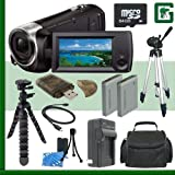 Sony HDR-CX440 Handycam Camcorder (Black) + 64GB + Green's Camera Bundle 3
