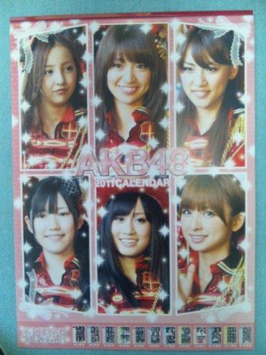 2011年度版 AKB48カレンダー 大型A2 全13ページ