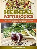 Herbal Antibiotics: Top 25 Herbal Antibiotics That Can Destroy Superbugs and Improve Your Health (Herbal Antibiotics, herbal Antibiotics guide, herbal antibiotics and antivirals)