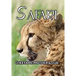 Safari Cheetahs: Mother & Cub