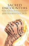 img - for Sacred Encounters book / textbook / text book