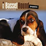 Basset Hound Puppies 2014 Mini Calendar