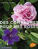 Des compagnes pour mes roses : Idées d'associations au jardin...
