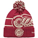 Detroit Red Wings 2014 NHL Winter Cla...