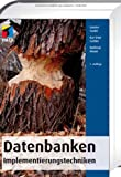 Datenbanken: Implementierungstechniken (mitp Professional)