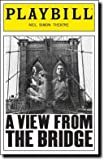 Playbill from A View From the Bridge starring Anthony LaPaglia Brittany Murphy Allison Janney Robert LuPone
