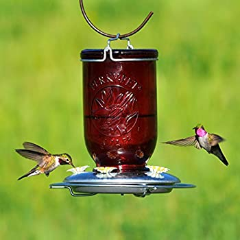 Perky-Pet 786 Red Mason Jar Glass Hummingbird Feeder