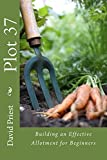 Plot 37: How to build an effective allotment