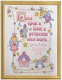 Bucilla 10 x 13-inch Princess Birth Record 14 Count Counted Cross Stitch Kit