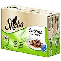 Sheba Cuisine