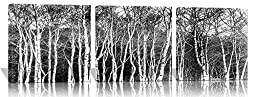 Spirit Up Art Huge Black and White Abstract Art Trees, Picture Painting on Canvas Print Stretched and Framed, Modern Home Decorations Wall Art set of 3 Each is 50*50cm #cy-775