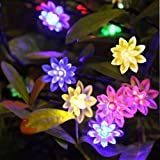 Innoo Tech InnooTech String Lights Battery Operated Christmas Lights 40 LED Lotus Flower Multi color