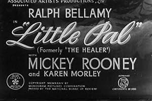 Little Pal (1935)