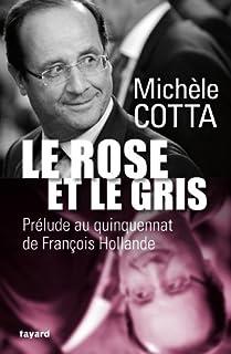 Le rose et le gris : prélude au quinquennat de François Hollande