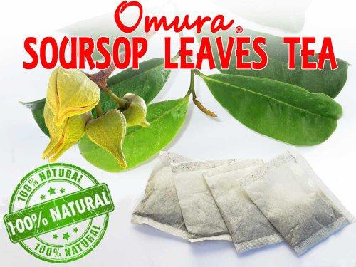 Soursop Leaves Herbal Tea 100% Natural Graviola Leaves, (25 Tea Bags)
