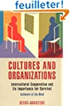 Cultures and Organizations: Software...
