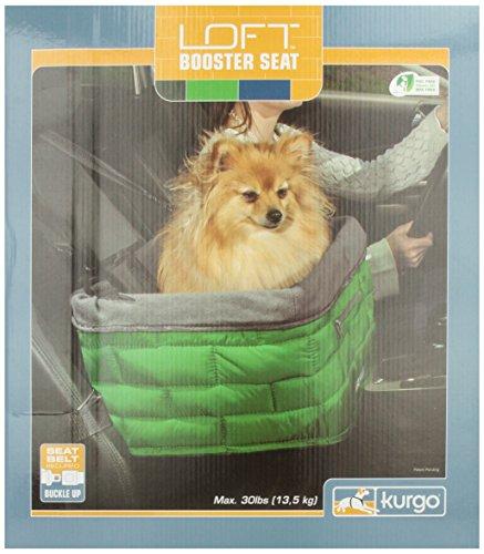 Kurgo Loft Dog Booster Seat, Green front-977767