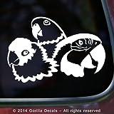 3 PARROTS Macaw Amazon Parrot Conure Bird Vinyl Decal Sticker Car Window Door Wall Sign WHITE