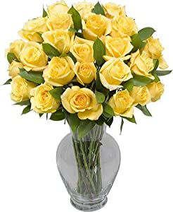 Two Dozen Yellow Roses without Vase