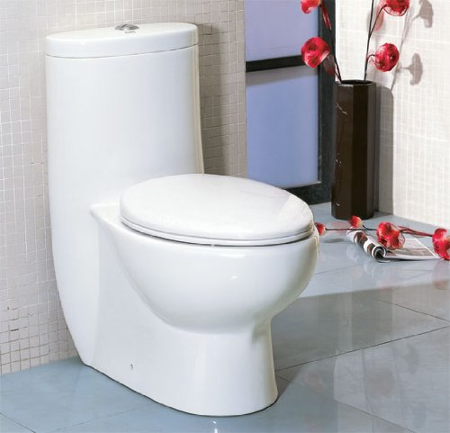 LUXExclusive Eco-Friendly Toilet EG-TB309. 28 3/8 '' x 16 '' x 30 6/8 '', White